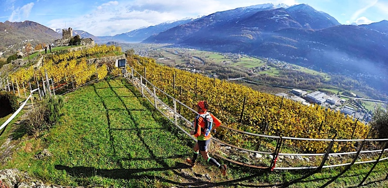 Valtellina wine trai